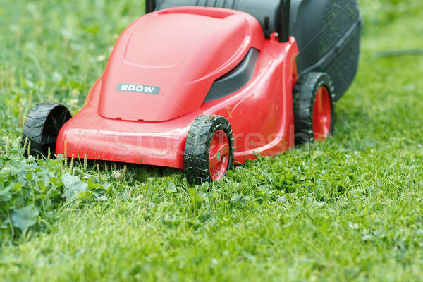 new lawnmower on green grass Stock photo © artush