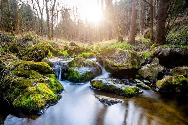 Falls on the small mountain river Stock photo © artush