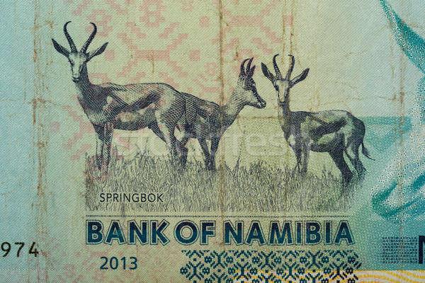 Detail of 10 Namibian dollars banknote Stock photo © artush