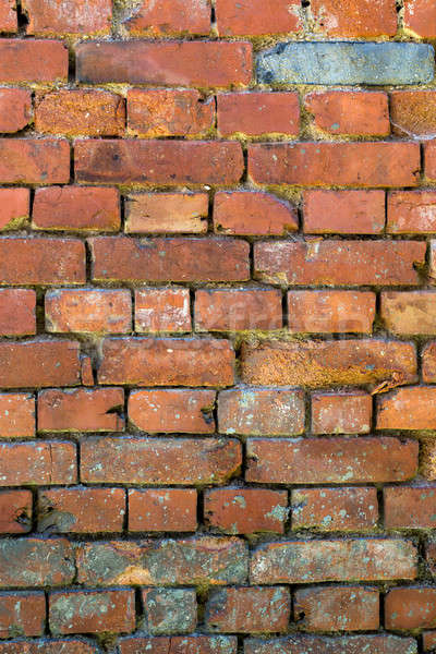 brick wall grunge background Stock photo © artush