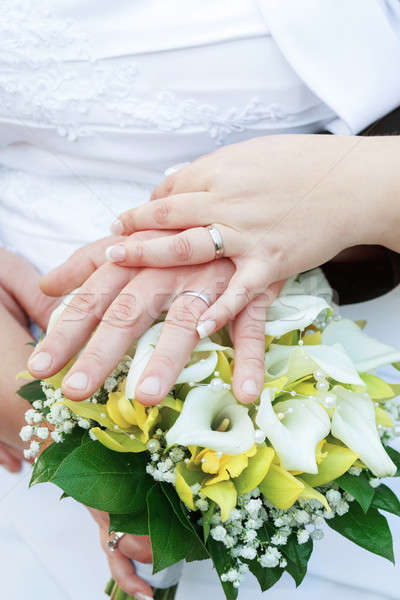 Stock photo: Bride and groom's hands with wedding rings