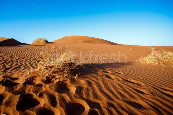 sand dunes at Sossusvlei, Namibia Stock photo © artush