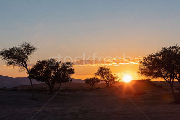 Napfelkelte tájkép rejtett Namíbia Afrika gyönyörű Stock fotó © artush