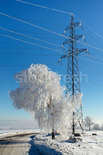 Winter weg zonnige ijzig dag blauwe hemel Stockfoto © artush