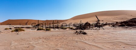 Güzel manzara gizlenmiş çöl panorama geniş Stok fotoğraf © artush