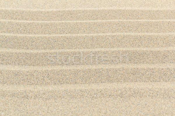 Homokos tengerpart textúra vonalak részletes homok felső Stock fotó © artush