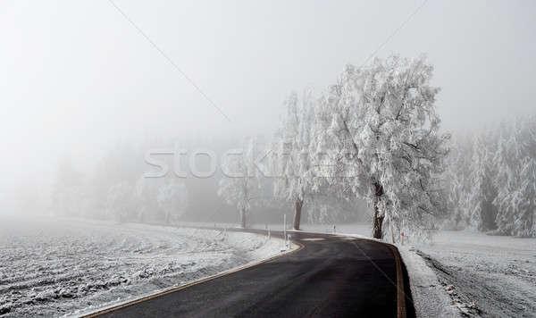 Hiver route brouillard rural bois pays Photo stock © artush