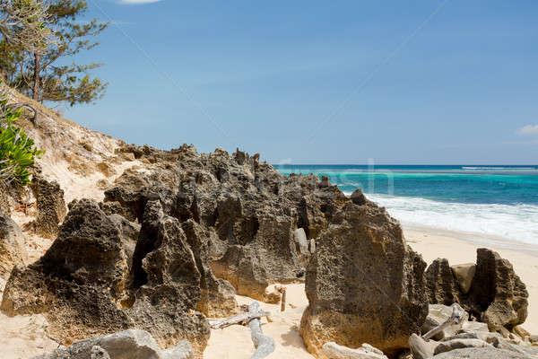 楽園 岩 ビーチ マダガスカル インド 海 ストックフォト © artush
