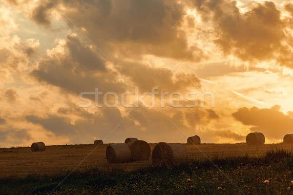フィールド わら 夏 日没 農業 ストックフォト © artush