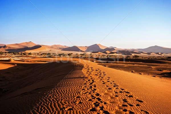 beautiful landscape of Hidden Vlei in Namib desert Stock photo © artush