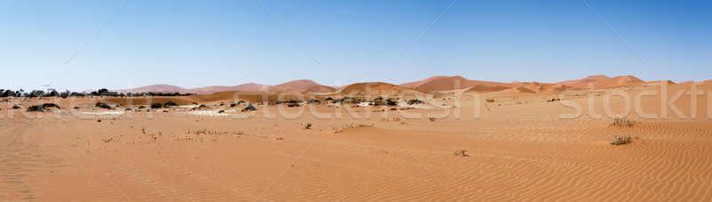 Stok fotoğraf: Güzel · manzara · gizlenmiş · çöl · panorama · geniş