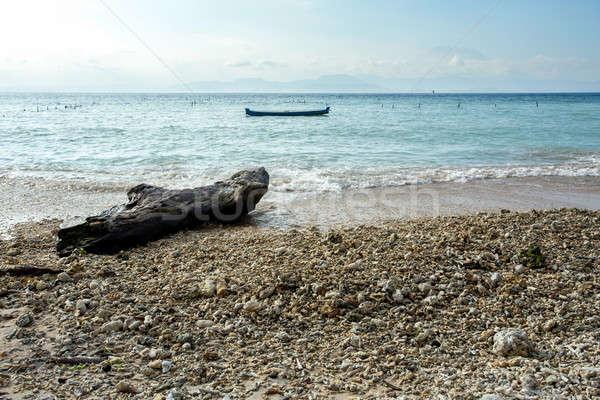 Sogno spiaggia bali Indonesia isola cielo blu Foto d'archivio © artush