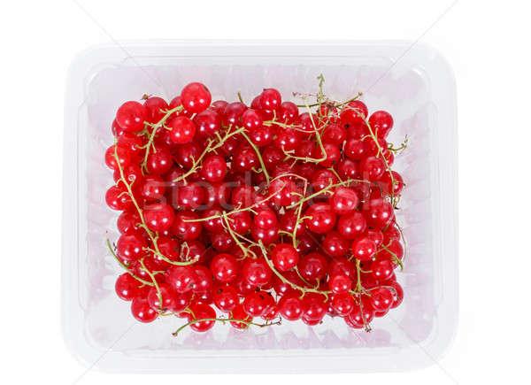 Karpuzu kırmızı frenk üzümü beyaz plastik Stok fotoğraf © artush
