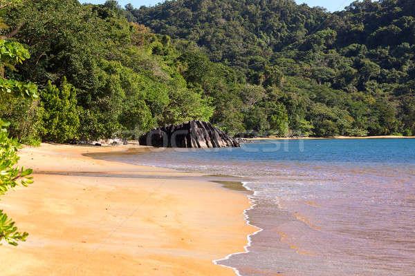 美しい 夢 楽園 ビーチ マダガスカル ストックフォト © artush