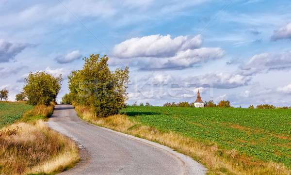 rural road in the autumn with yellow trees Stock photo © artush