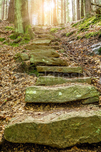 Stone staircase leading up with sunlight Stock photo © artush