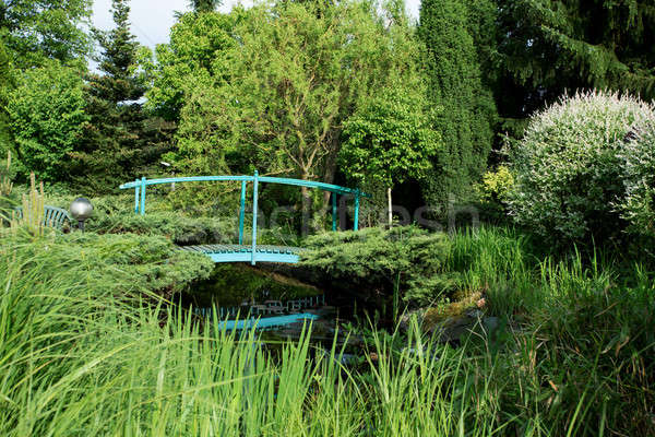 Pequeno verde passarela lagoa primavera jardim Foto stock © artush