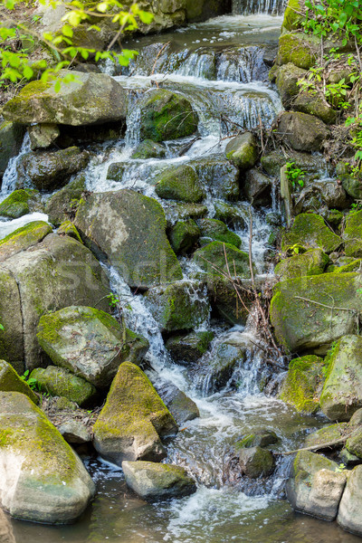 Falls on the small creek in spring forest Stock photo © artush