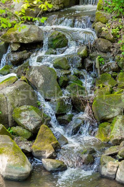 Piccolo torrente primavera foresta acqua bellezza Foto d'archivio © artush