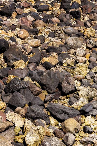 Pietre corallo basso marea Indonesia indian Foto d'archivio © artush