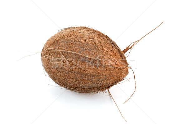 Coconut on a white background  Stock photo © artush