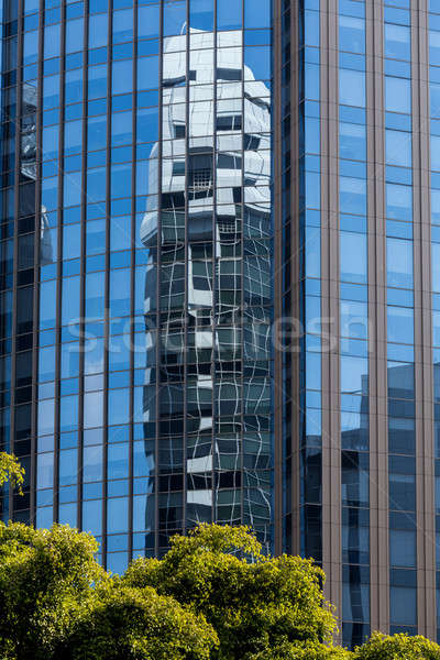 Felhőkarcoló ablakok tükröződés másik zöld fa elöl Stock fotó © artush