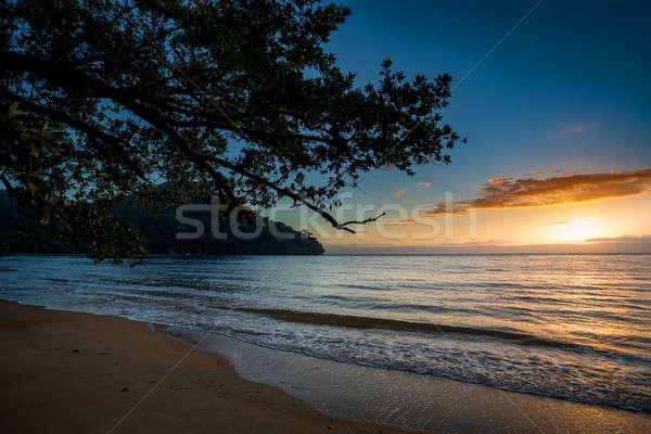 Stock photo: Beautiful dream paradise beach, Madagascar