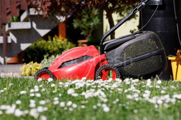 lawnmower on green grass Stock photo © artush
