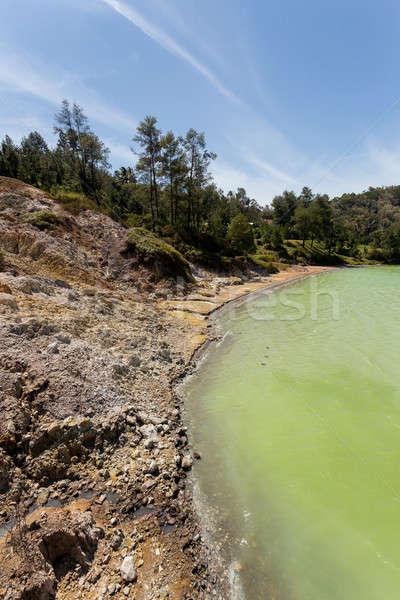 sulphurous lake - danau linow indonesia Stock photo © artush