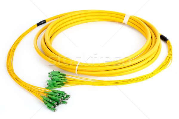 Rost optikai számítógép kapcsolat hálózat zöld Stock fotó © artush