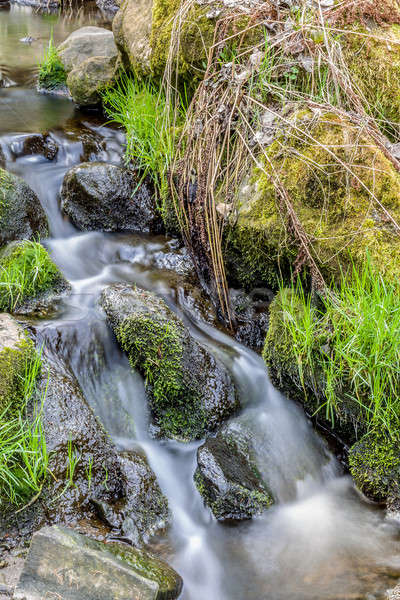 Falls on the small mountain river in a wood Stock photo © artush