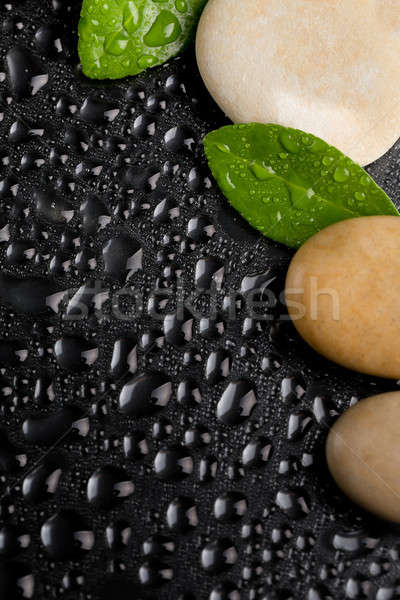 Zen pierres noir gouttes d'eau caillou feuille verte Photo stock © artush