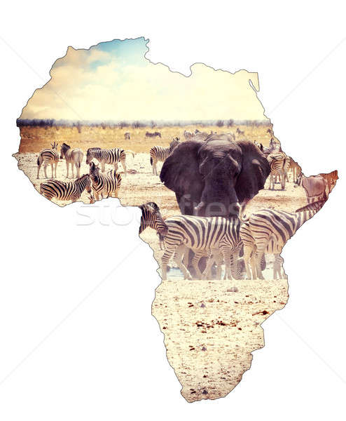 Map of africa continent concept, safari on waterhole with elephants Stock photo © artush