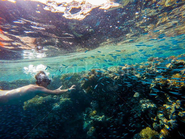 Young boy Snorkel swim in shallow water with coral school of fis Stock photo © artush
