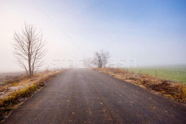 Kırsal yol buğu mavi Stok fotoğraf © artush