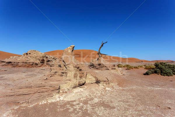Sossusvlei beautiful landscape of death valley, namibia Stock photo © artush