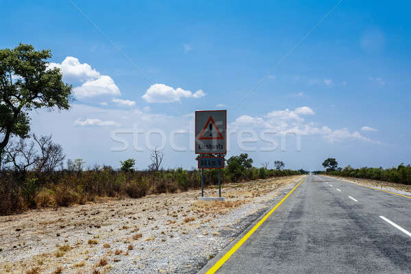 Endless road with blue sky and sign elephants crossing Stock photo © artush