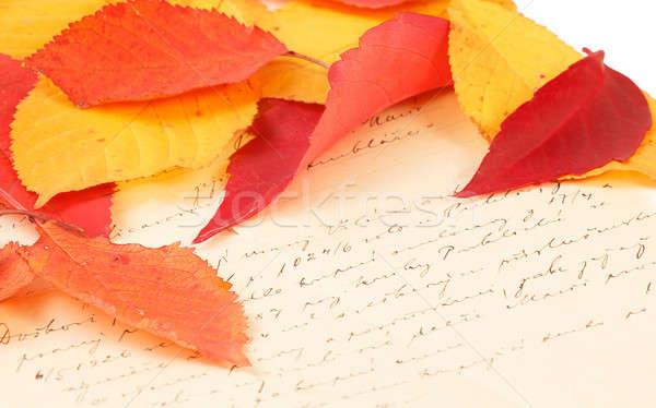 handwritten letter with autumn leaves Stock photo © artush