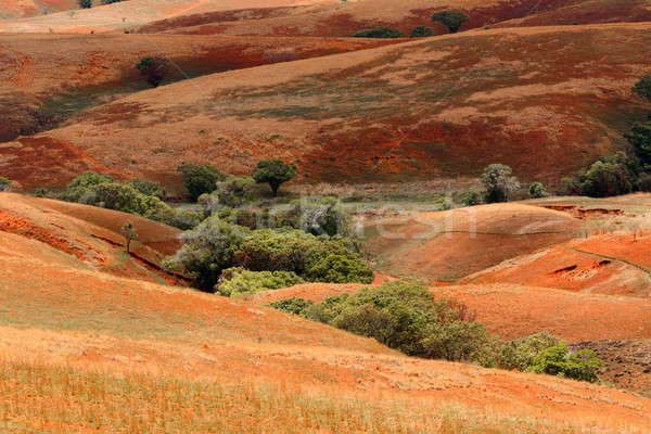 Madagascar countryside highland landscape Stock photo © artush