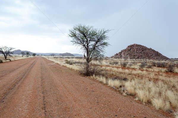 ストックフォト: エンドレス · 道路 · ナミビア · 風景 · 自然 · 背景