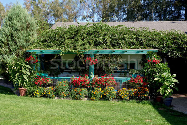 Beautiful pergola in garden design Stock photo © artush