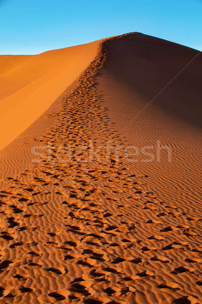 beautiful landscape Hidden Vlei in Namibia, Africa Stock photo © artush
