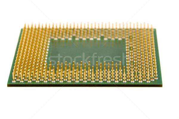 Makró számítógép processzor izolált fehér háttér Stock fotó © artush