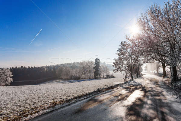 Winter road on a sunny frosty day Stock photo © artush