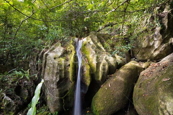 Small waterfall in Masoala national park, Madagascar Stock photo © artush