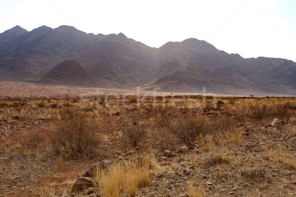 Stock photo: fantrastic Namibia desert landscape