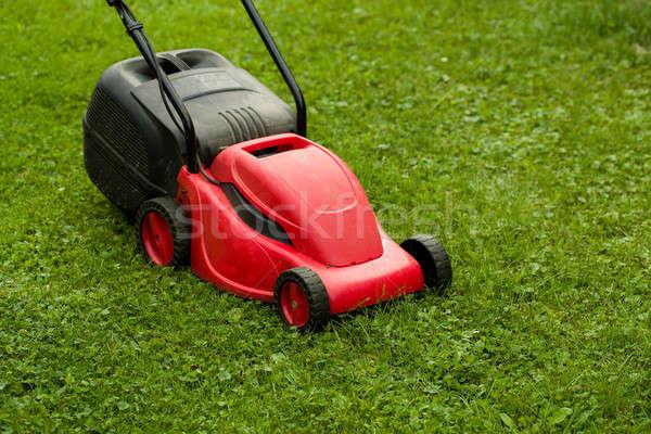 red lawnmower on green grass Stock photo © artush