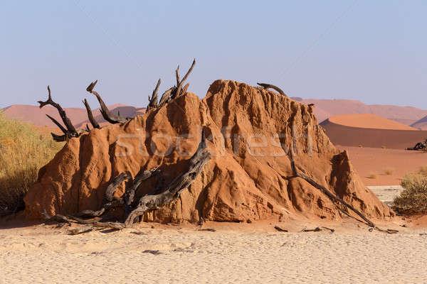 Güzel manzara ölüm vadi gündoğumu gizlenmiş Stok fotoğraf © artush