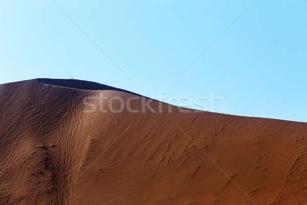 Dűne rejtett sivatag gyönyörű napfelkelte halott Stock fotó © artush