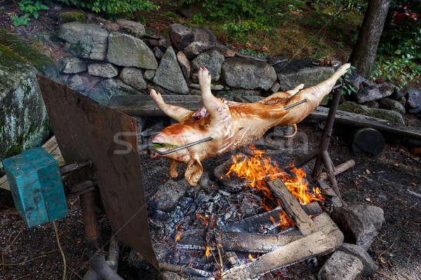 Big grill outdoor varken open vuur voedsel Stockfoto © artush